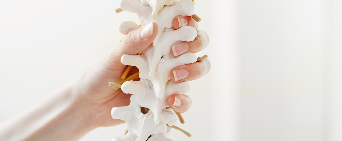 Back Pain Spine Care Spine Physio Rehab